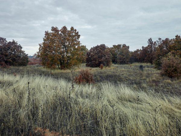 Montes de Torozos II, Valladolid